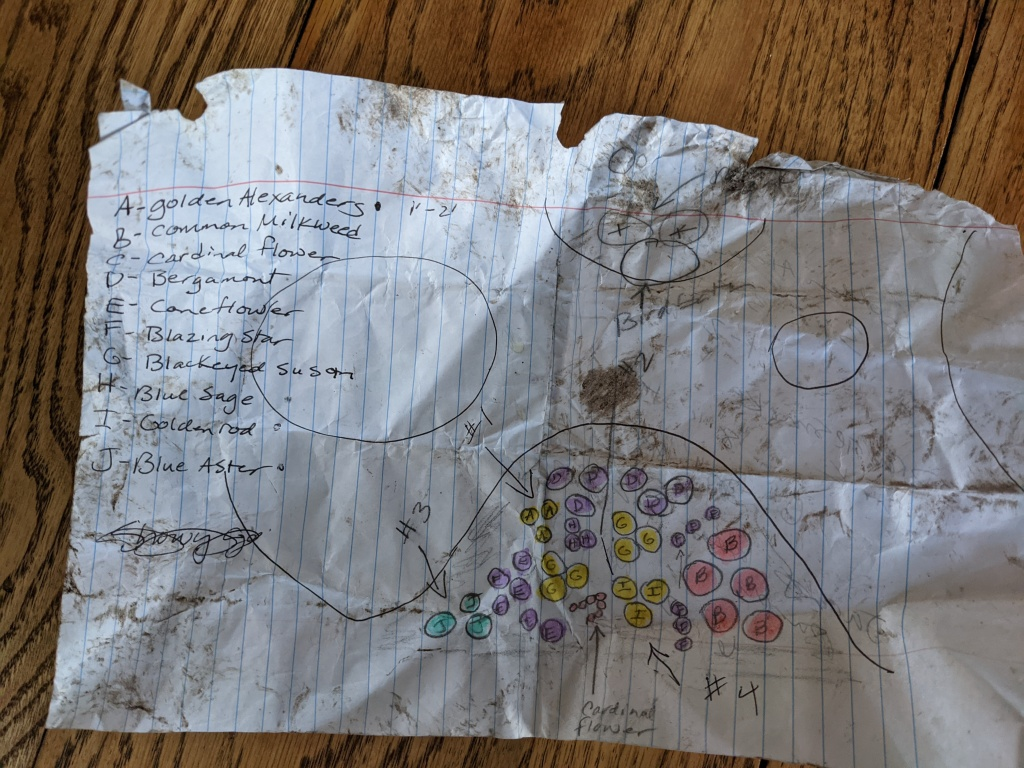 hand-scribbled garden plan in pencil and marker